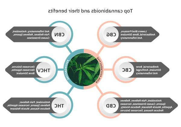 Cbd and cbn products for cannabinoids cbd cbn Test, Advice, Review