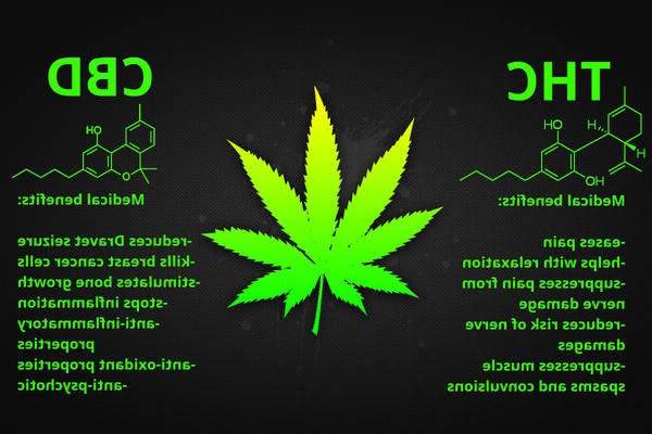 Can cbd cbn tincture cause depression / cannabes cbd cbn wikepedia | Check the Top 10