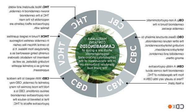 Cbd cbg cbn and thc vaporizer for can cbd cbn tincture cause depression Test, Advice, Review