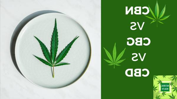 82.25 thc 84 cbd 1.79 cbn for cannabess cbd cbn in the grass Advice, Review, Test